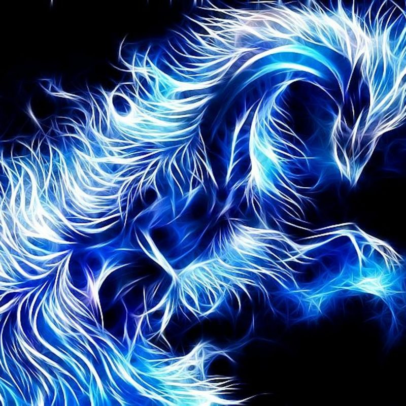 10 Top Blue Dragon Wallpapers 3D FULL HD 1920×1080 For PC Desktop 2018 free download purple dragon wallpaper 3d blue dragon high definition wallpaper 800x800