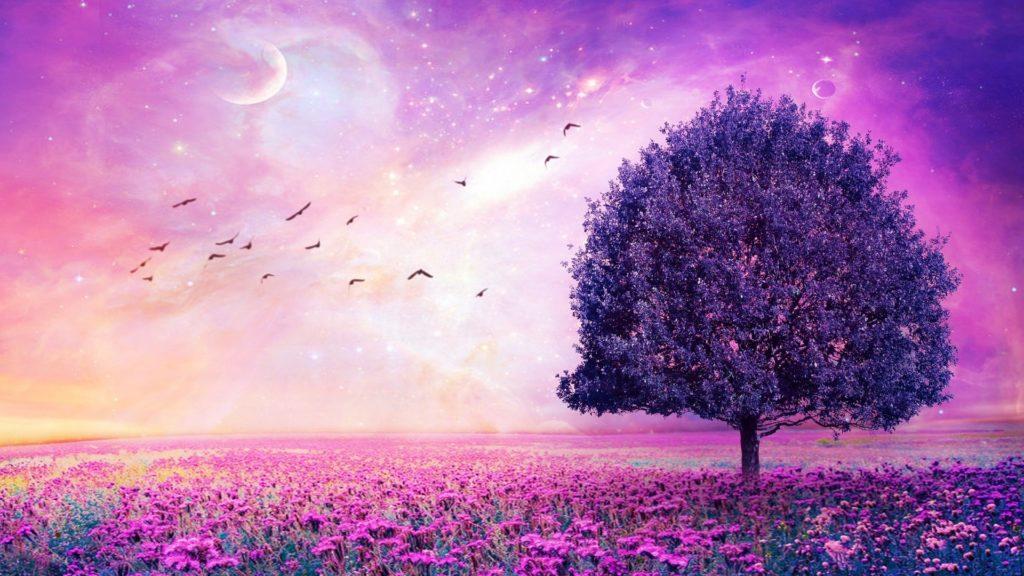 10 Most Popular Purple Desktop Wallpaper Hd FULL HD 1920×1080 For PC Background 2020 free download purple flower wallpaper free download for desktop wallpaper wiki 1024x576