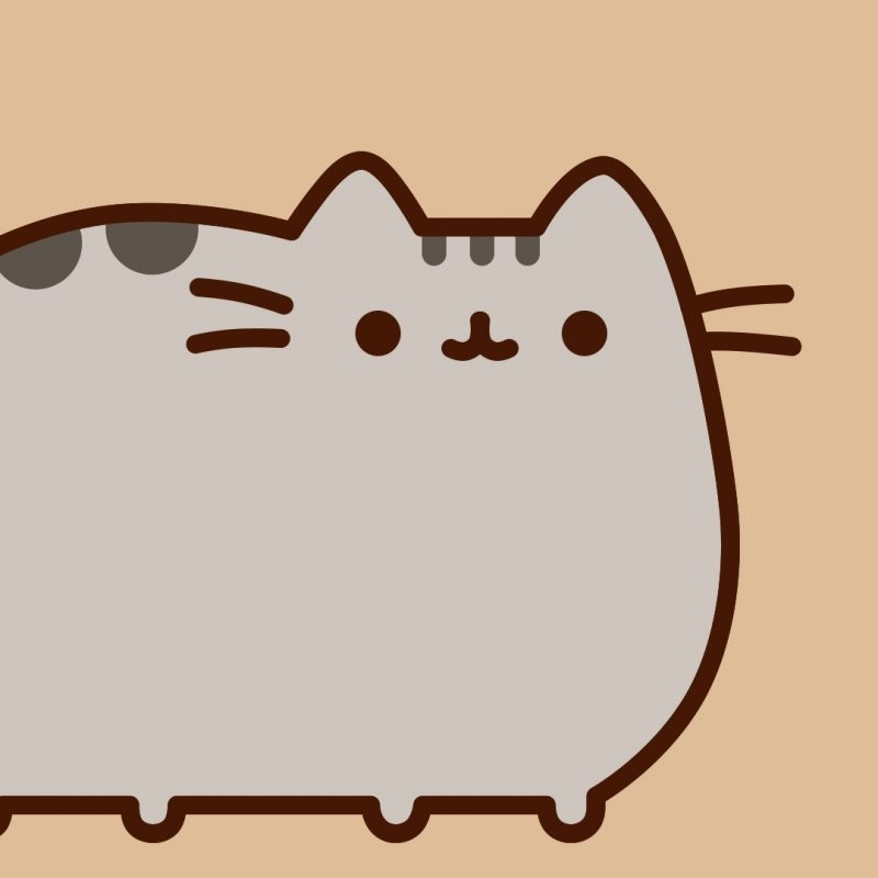 10 Top Pusheen The Cat Wallpaper Desktop FULL HD 1080p For PC Desktop 2018 free download pusheen cat desktop wallpaper 59 images 1 800x800