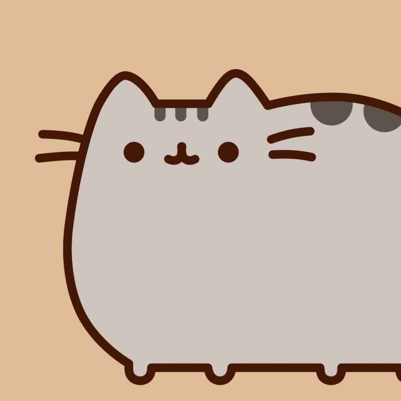 10 Top Pusheen The Cat Wallpaper Desktop FULL HD 1080p For PC Desktop 2018 free download pusheen cat desktop wallpaper 59 images 2 800x800