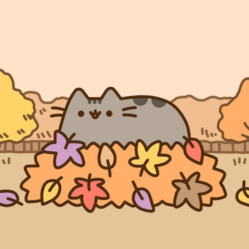 10 Top Pusheen The Cat Wallpaper Desktop FULL HD 1080p For PC Desktop 2018 free download pusheen lol pinterest pusheen pusheen cat and cat 800x800