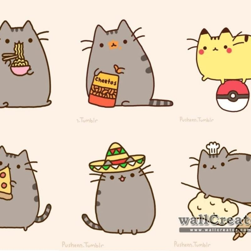 10 Top Pusheen The Cat Wallpaper Desktop FULL HD 1080p For PC Desktop 2018 free download pusheen pusheen wallpaper 1600 900 wallpaper amusant no 800x800