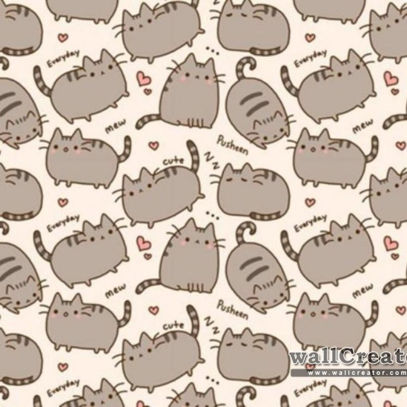 10 Top Pusheen The Cat Wallpaper Desktop FULL HD 1080p For PC Desktop 2018 free download pusheen the cat wallpapers wallpaper cave 1 800x800