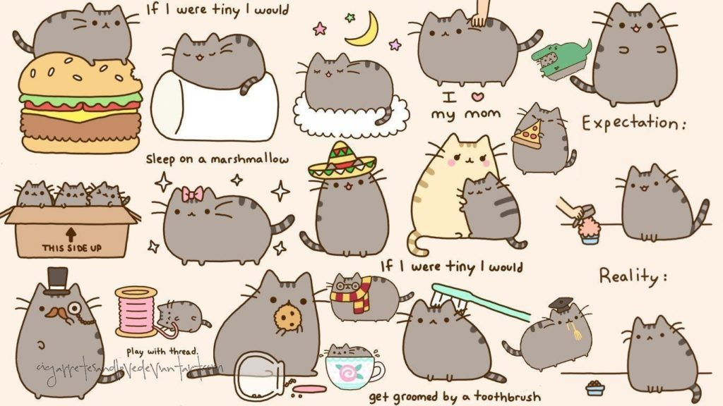 10 Best Pusheen The Cat Wallpaper FULL HD 1920×1080 For PC Background 2020 free download pusheen the cat wallpapers wallpaper cave 1024x576