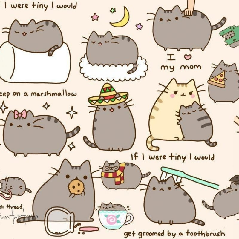 10 Top Pusheen The Cat Wallpaper Desktop FULL HD 1080p For PC Desktop 2018 free download pusheen wallpapers wallpaper cave 1 800x800