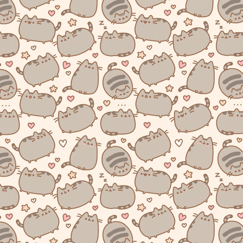 10 Top Pusheen The Cat Wallpaper Desktop FULL HD 1080p For PC Desktop 2018 free download pusheen wallpapers wallpaper cave 800x800