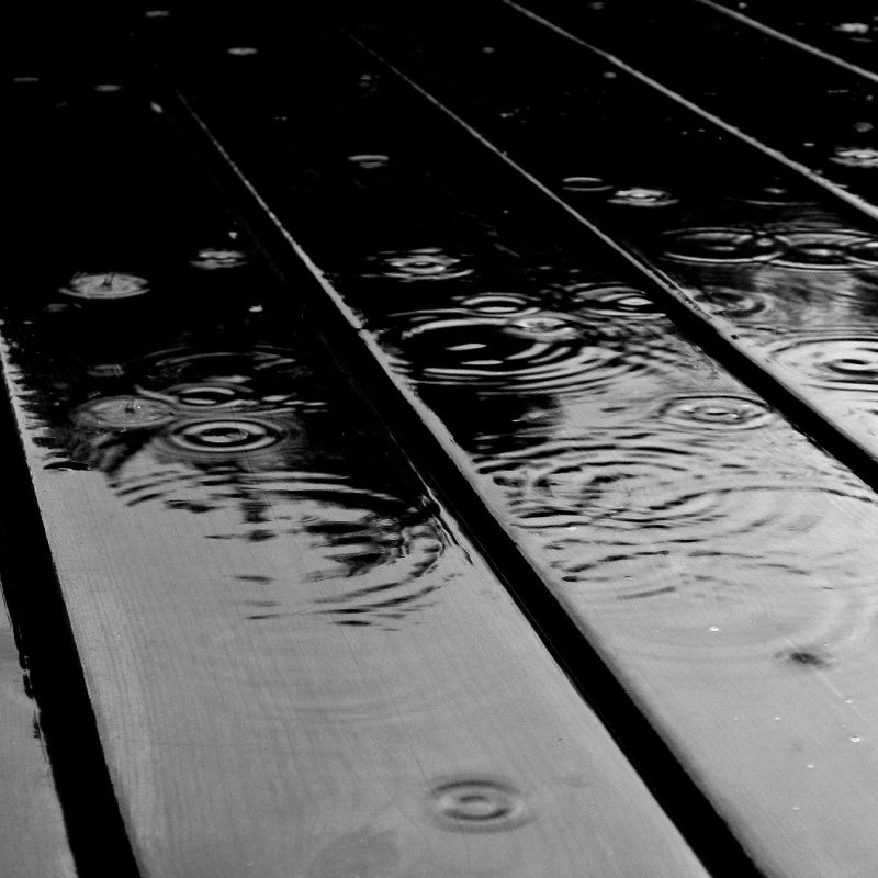 10 Best Computer Wallpaper Black And White FULL HD 1080p For PC Background 2020 free download rain drops black and white wallpaper white wallpaper rain and 1 800x800