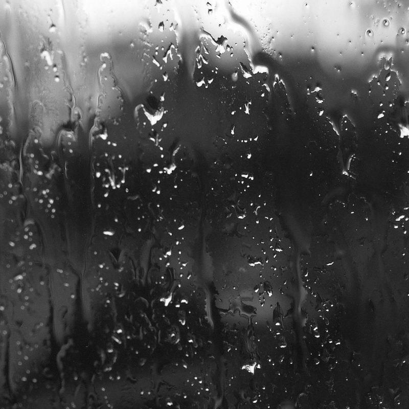 10 Best Rain On Window Wallpaper FULL HD 1080p For PC Desktop 2018 free download rain window wallpaper hd media file pixelstalk 800x800