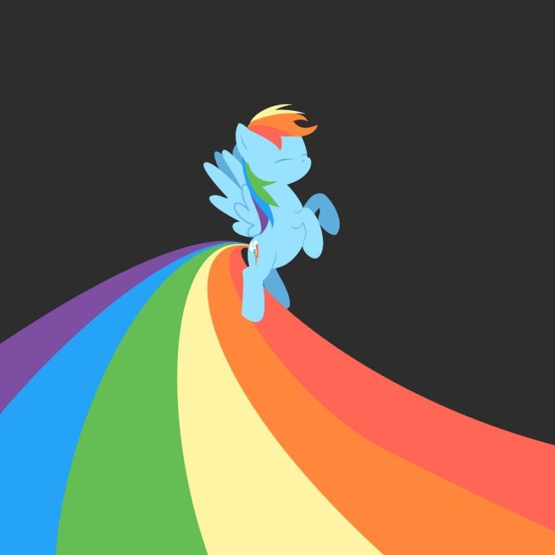 10 Best Mlp Rainbow Dash Wallpaper FULL HD 1920×1080 For PC Background 2018 free download rainbow dash on mlp fim wallpapers deviantart 800x800