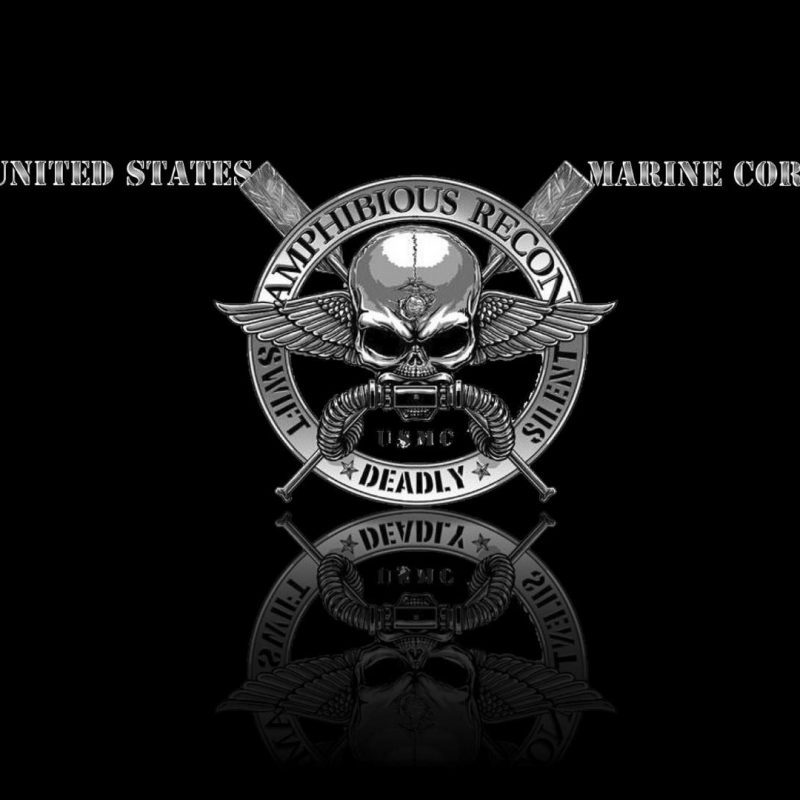 10 Latest Marine Corps Logo Wallpaper FULL HD 1080p For PC Desktop 2018 free download recon wallpaper wallpaper studio 10 tens of thousands hd and 2 800x800
