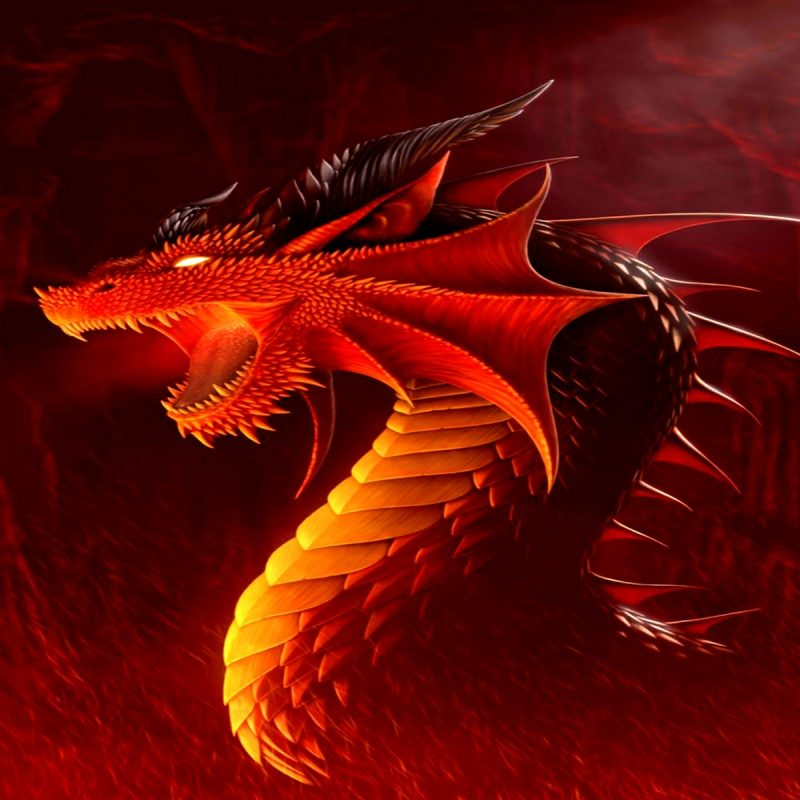 10 Latest Red Dragon Wallpaper Hd 1080P FULL HD 1920×1080 For PC Background 2018 free download red dragon wallpapers hd wallpaper wiki 800x800