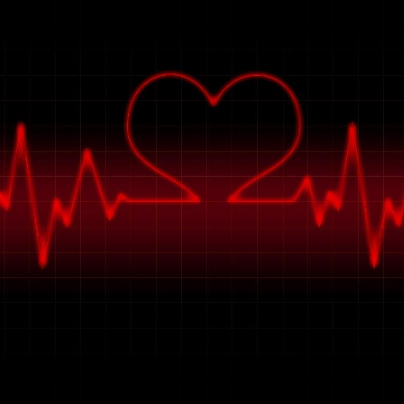 10 Latest Red Heart Black Background FULL HD 1080p For PC Background 2018 free download red heart with black backgrounds wallpaper cave 2 800x800