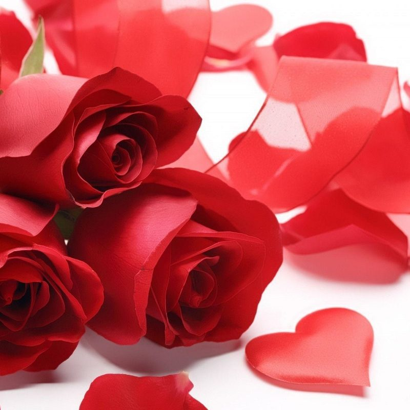 10 New Roses And Hearts Wallpaper FULL HD 1080p For PC Desktop 2018 free download red rose heart wallpaper 53 images 800x800