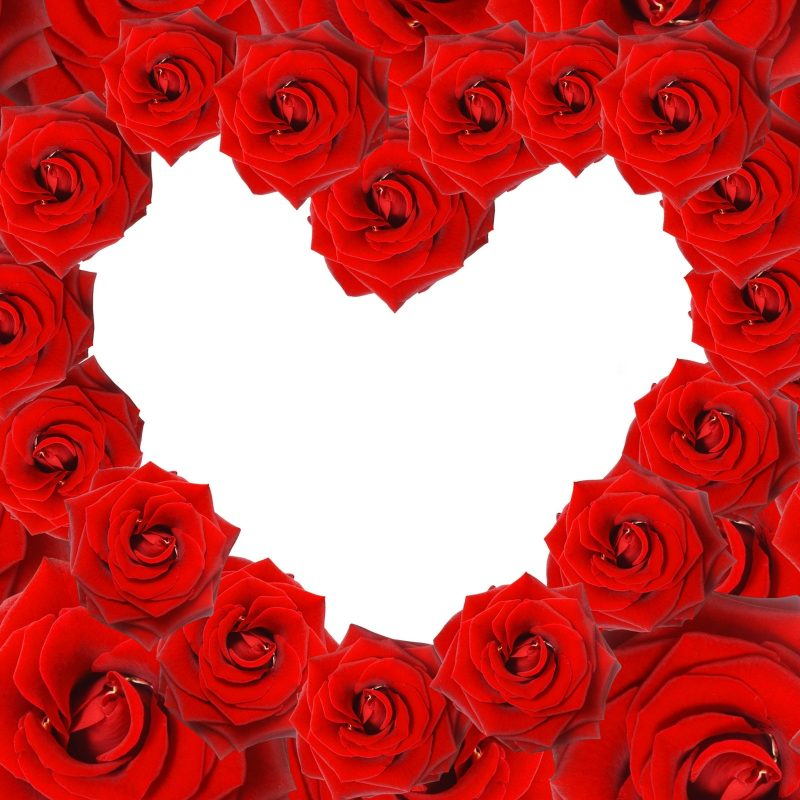 10 New Roses And Hearts Wallpaper FULL HD 1080p For PC Desktop 2018 free download red roses love heart wallpapers hd wallpapers id 8639 800x800