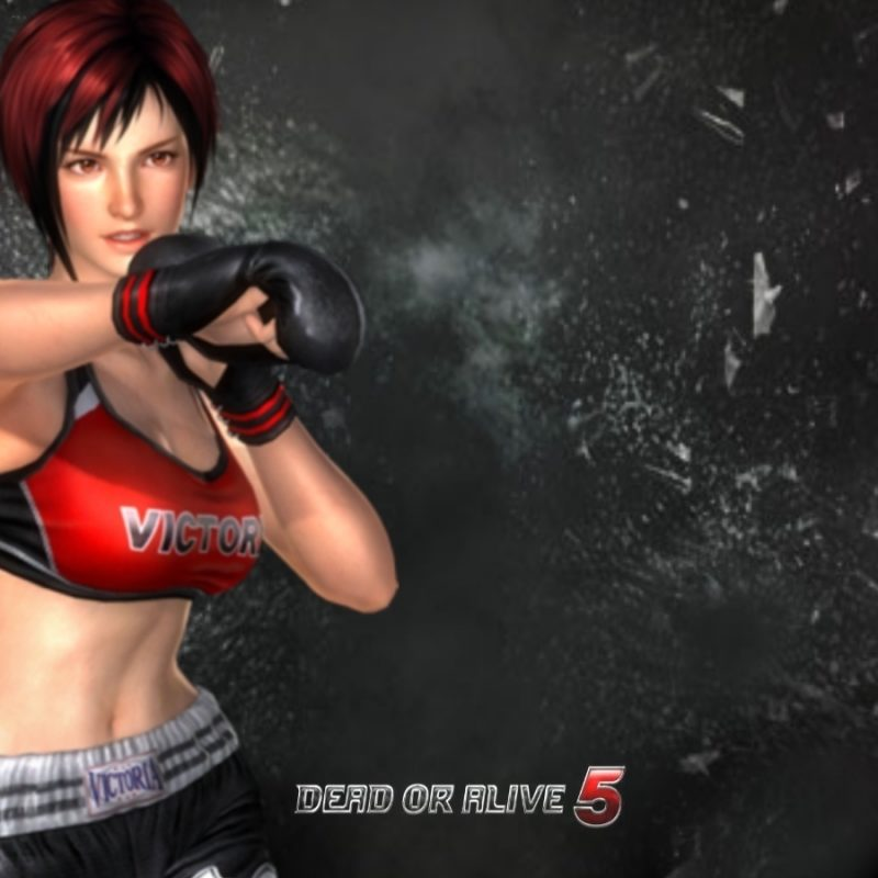 10 Latest Dead Or Alive 5 Wallpaper FULL HD 1920×1080 For PC Background 2018 free download rendered bits fanmade dead or alive 5 game wallpaper 800x800