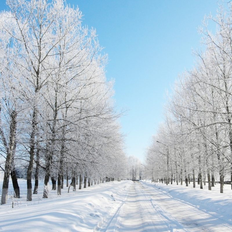 10 Top Snow Pictures For Wallpaper FULL HD 1920×1080 For PC Desktop 2020 free download road covered with snow wallpaper 1920x1080 10 000 fonds decran hd 800x800