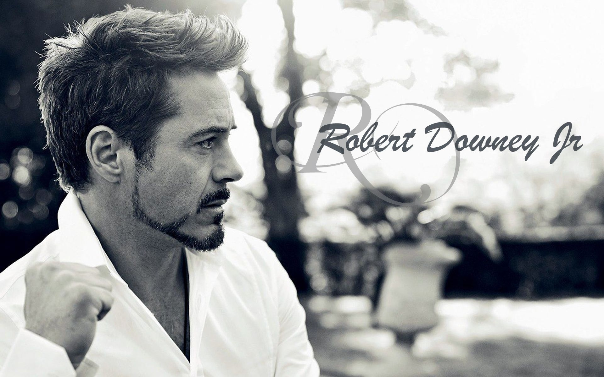 robert downey jr hd images : get free top quality robert downey jr