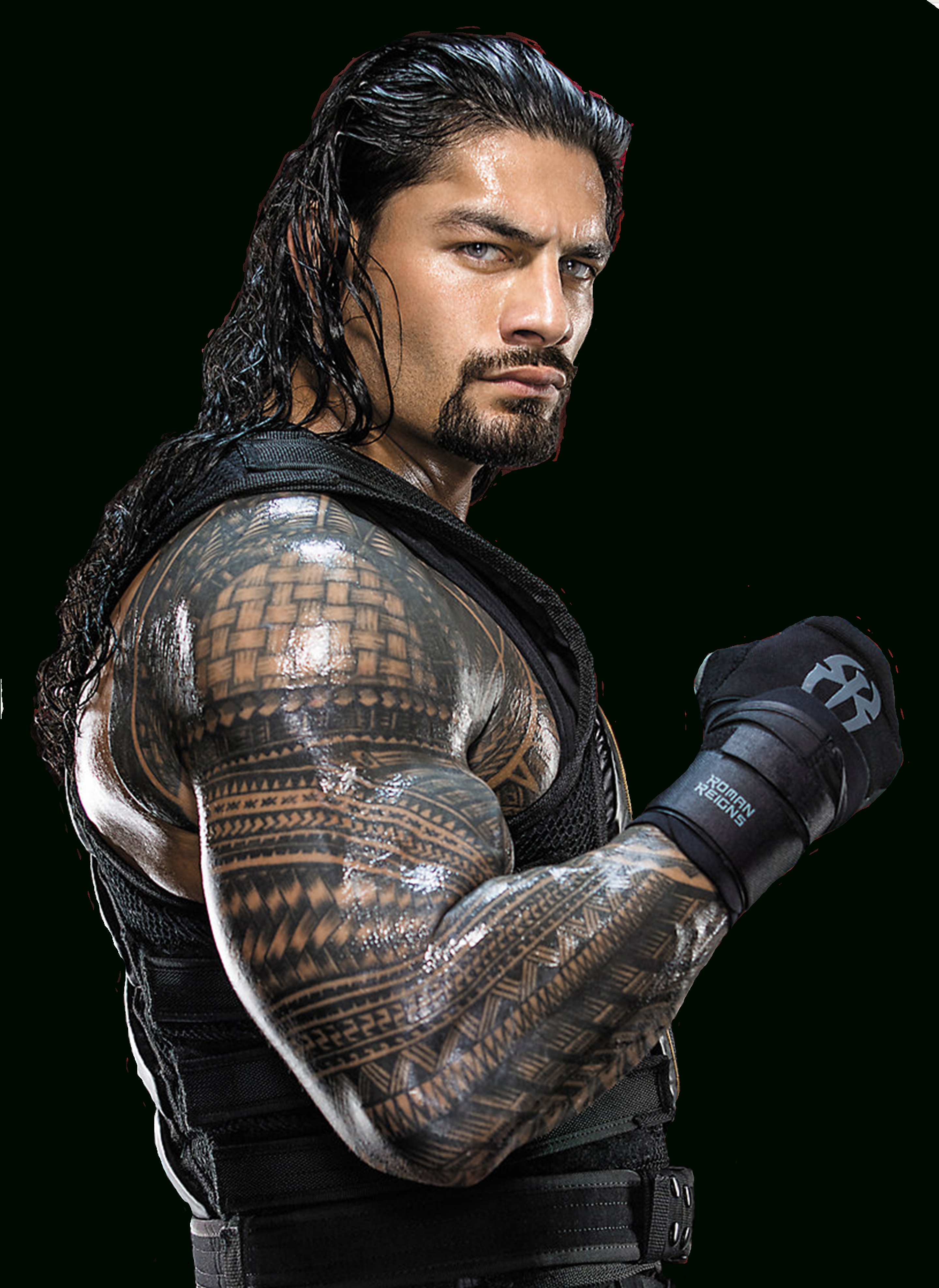 roman reigns favouritesceltakerthebest on deviantart