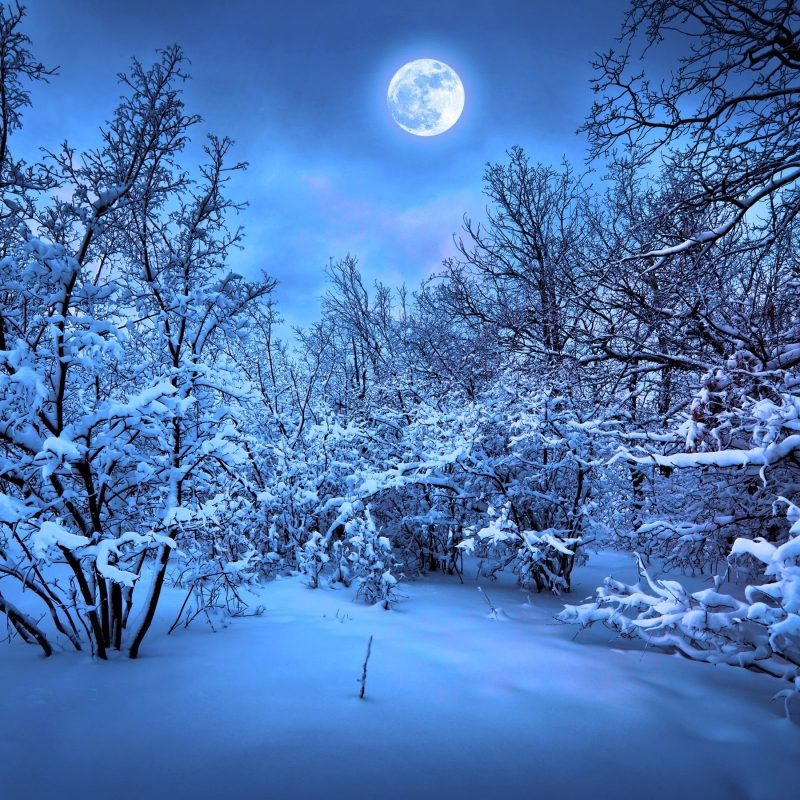 10 Top Romantic Winter Night Wallpaper FULL HD 1080p For PC Desktop 2018 free download romantic winter night wallpaper images outdoors wallpaper 1080p 800x800