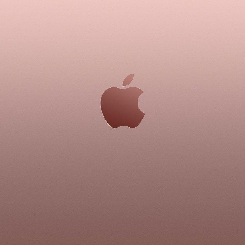 10 Best Rose Gold Iphone 6S Wallpaper FULL HD 1080p For PC Desktop 2018 free download rose gold apple iphone 6s wallpaper fond decran pinterest 800x800