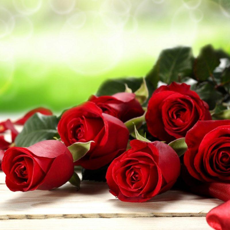 10 Most Popular Rose Wallpaper For Desktop FULL HD 1080p For PC Desktop 2018 free download rose wallpaper for desktop red rose desktop wallpapers 006 800x800