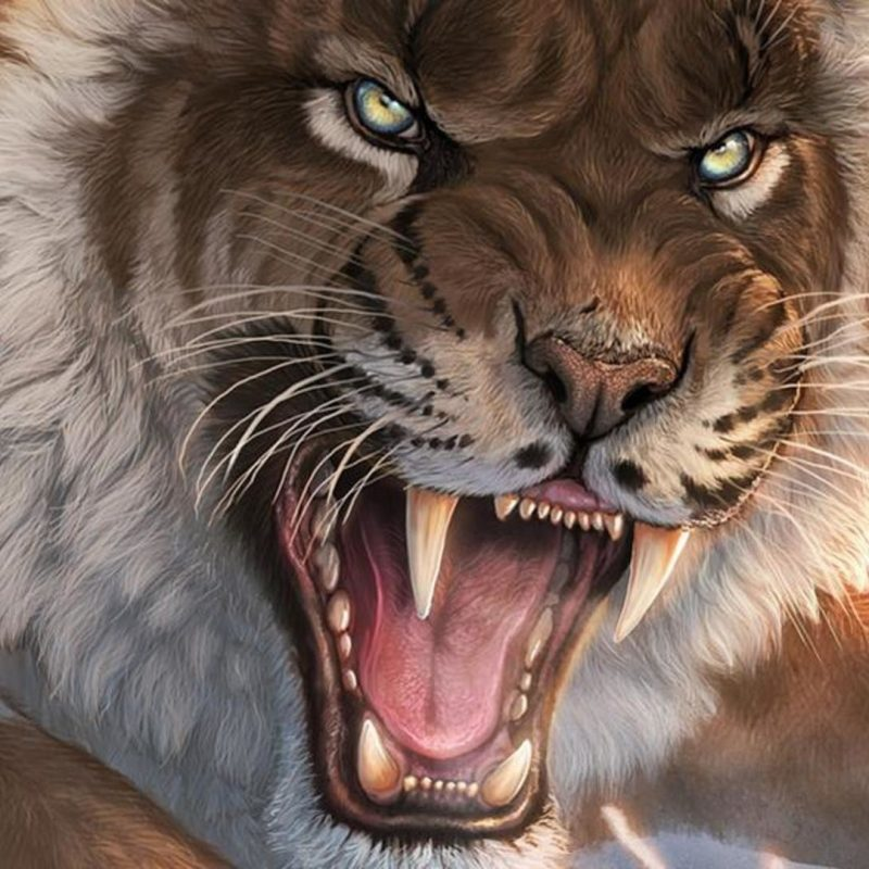 10 Best Saber Tooth Tiger Wallpapers FULL HD 1920×1080 For PC Background 2018 free download saber tooth tiger wallpaper 71 images 800x800
