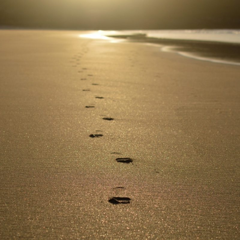10 New Footprints In The Sand Images Free FULL HD 1920×1080 For PC Desktop 2018 free download sand walk in free stock photo public domain pictures 800x800