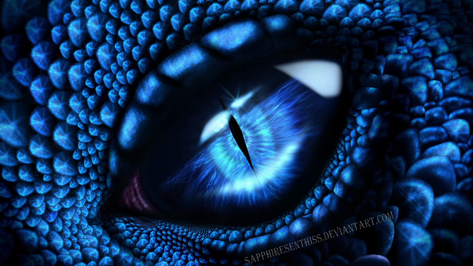 sapphire dragon eye wallpaper from eyes wallpapers