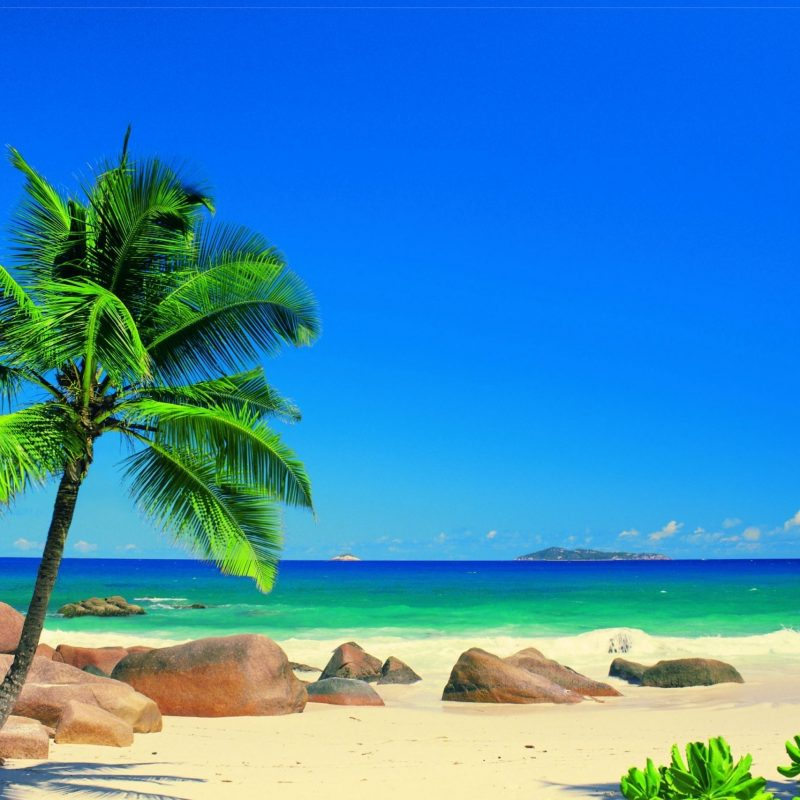 10 Best Caribbean Beach Pictures Wallpaper FULL HD 1920×1080 For PC Desktop 2018 free download saturday 05th september 2015 01pm awesome caribbean beach image 800x800