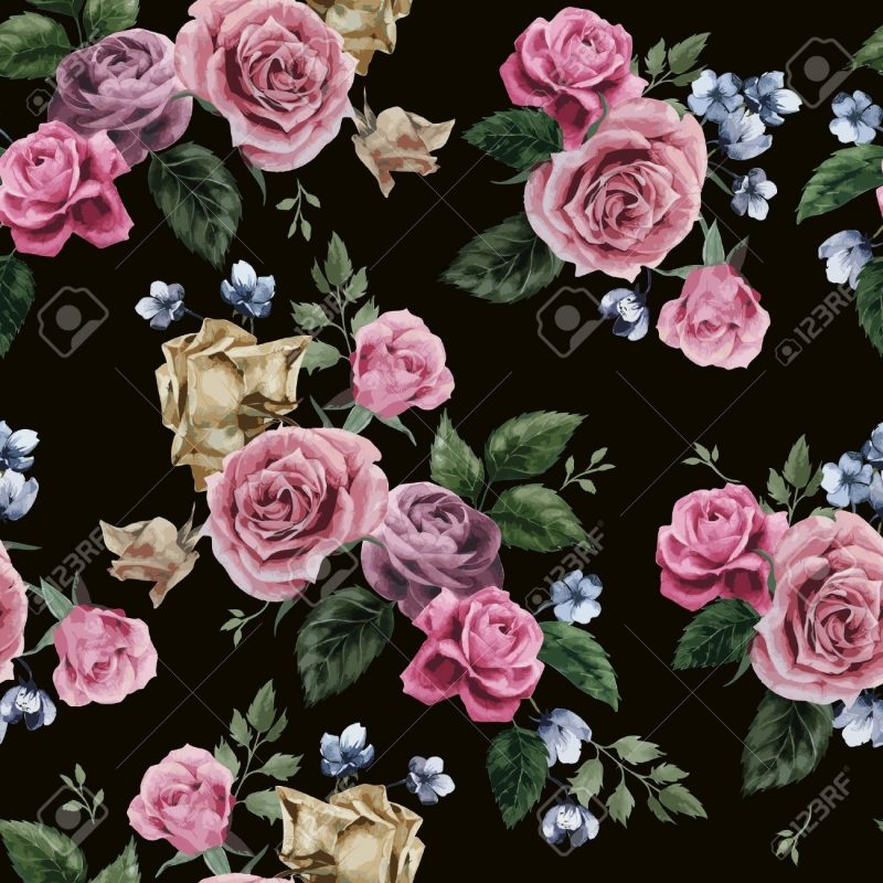 10 Best Roses On Black Background FULL HD 1920×1080 For PC Background 2018 free download seamless floral pattern with of pink roses on black background 800x800