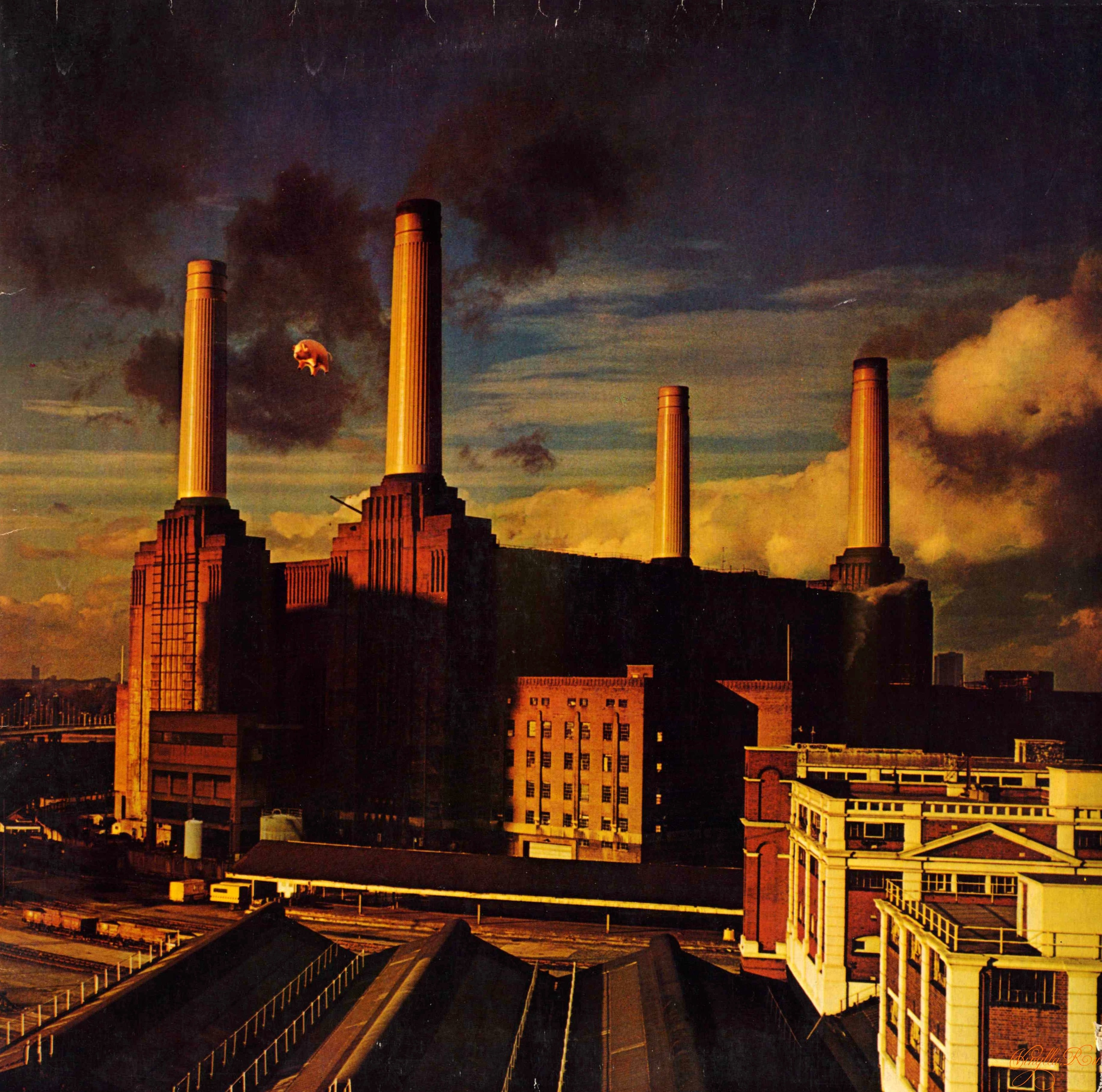 similiar pink floyd animals wallpaper keywords | android | pinterest