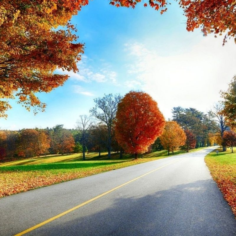 10 Latest Scenery Wallpaper Hd 1080P FULL HD 1920×1080 For PC Background 2018 free download site scene beautiful autumn road scenery wallpapers hd 1080p 800x800
