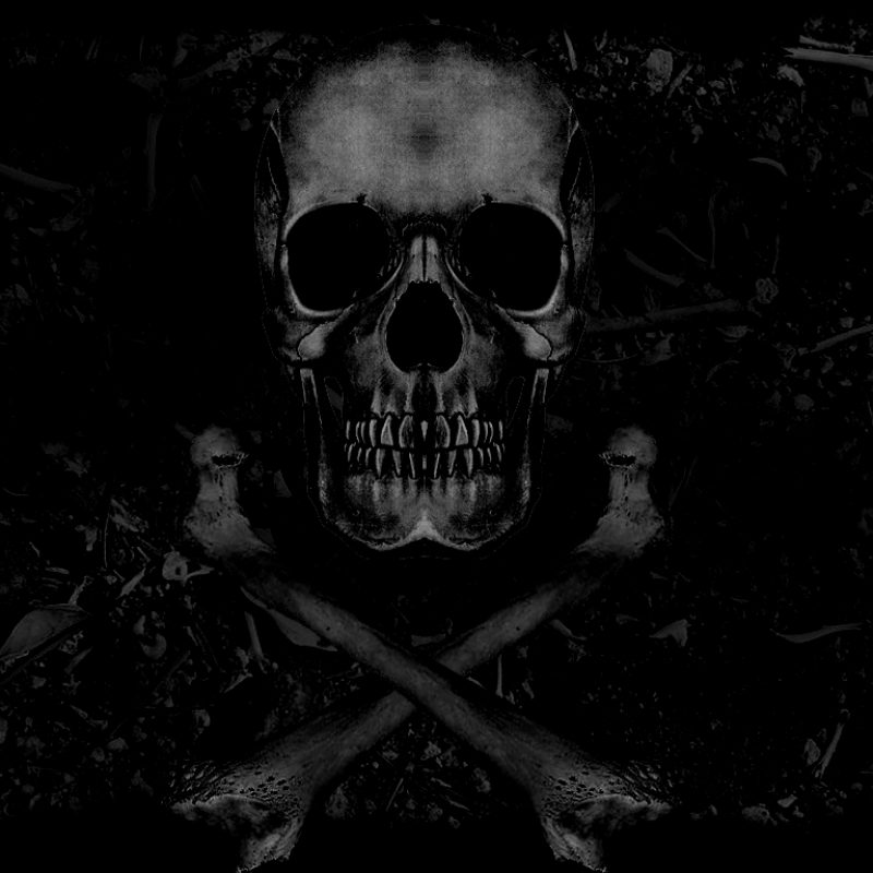 10 New Scull And Crossbones Wallpaper FULL HD 1920×1080 For PC Desktop 2018 free download skull and crossbones wallpaper clickandseeworld is all about funny 800x800