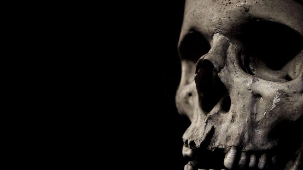 10 Top Skull Hd Wallpaper 1920X1080 FULL HD 1920×1080 For PC Background 2018 free download skull full hd wallpaper and background image 1920x1080 id444231 1024x576