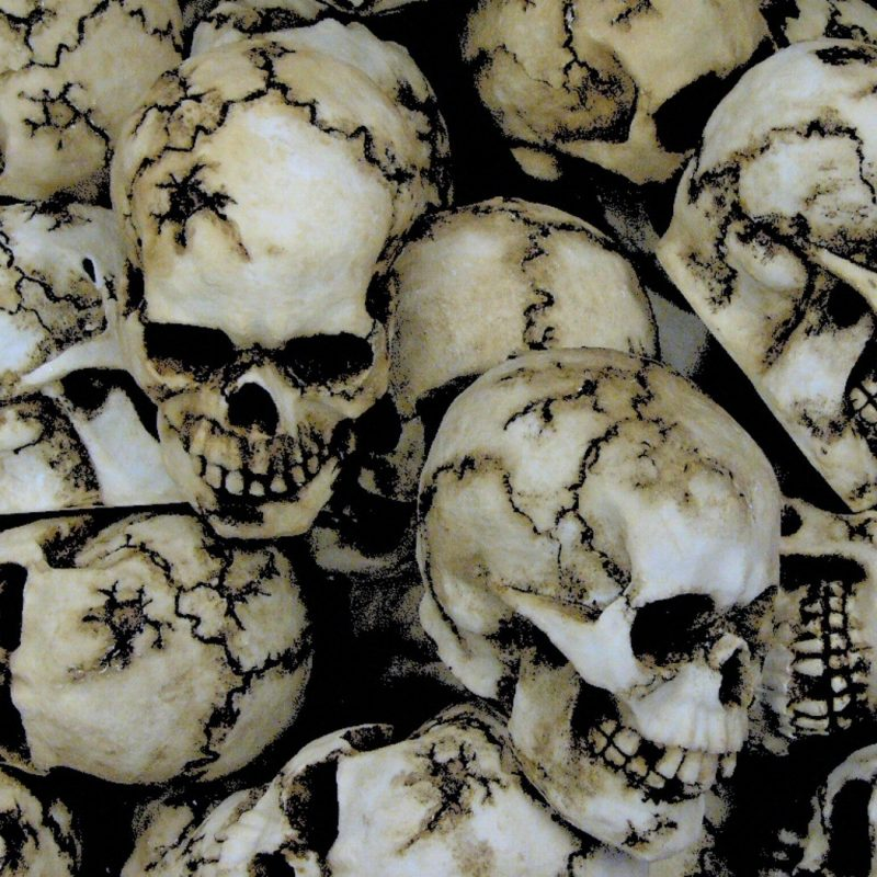 10 Best Skulls Wallpaper Free Download FULL HD 1920×1080 For PC Background 2018 free download skulls wallpapers 72 dark skull wallpaper dark wallpapers high 800x800