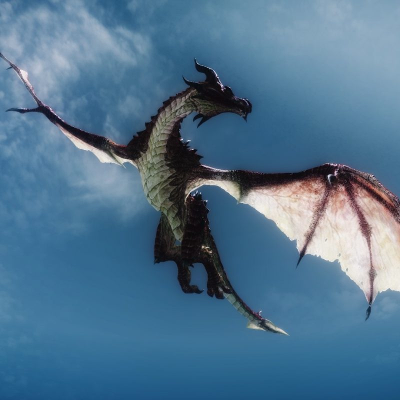 10 Top Images Of Dragons Flying FULL HD 1920×1080 For PC Desktop 2020 free download skyrim dragon flying dragons pinterest skyrim dragon dragons 800x800