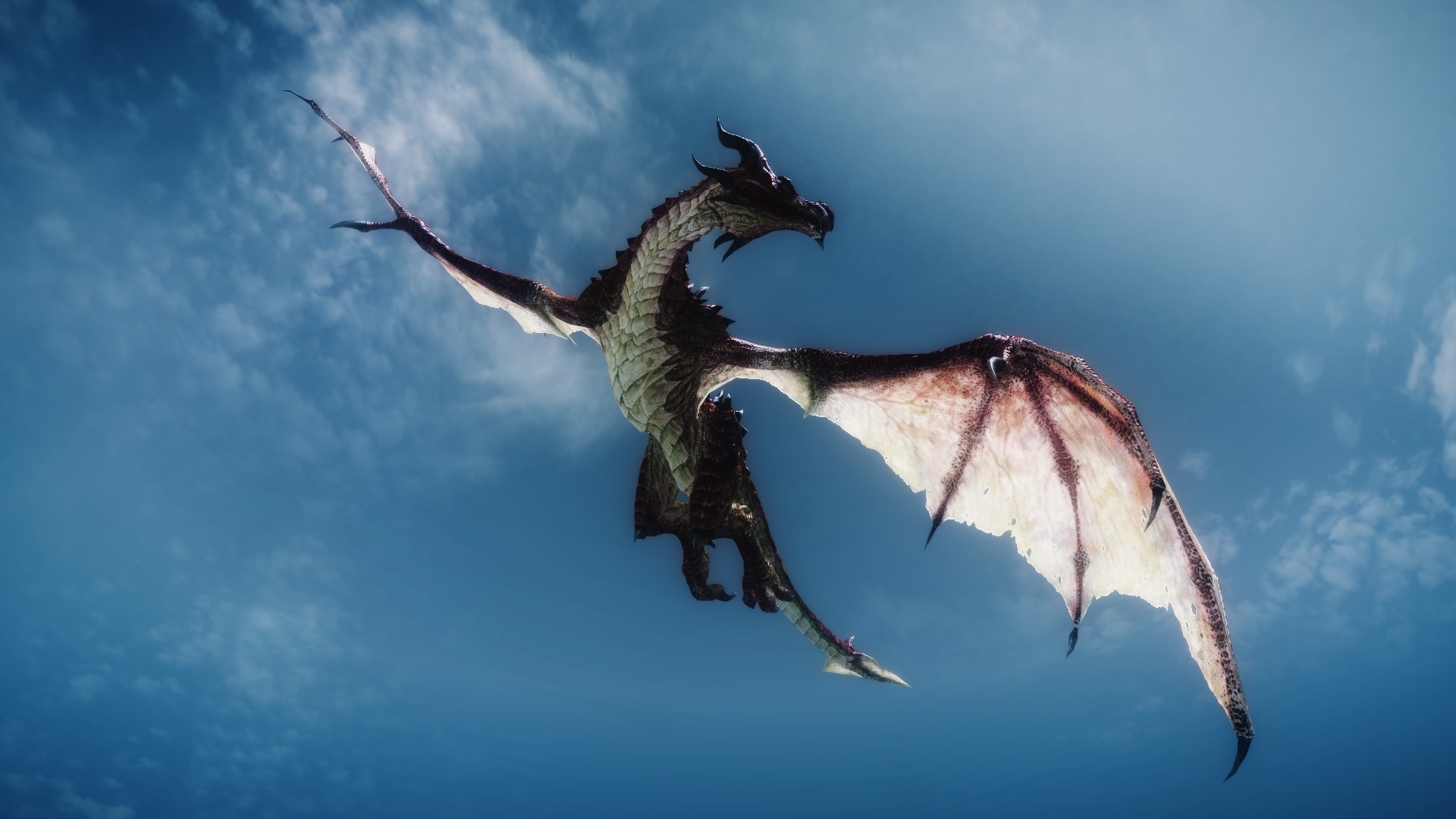 skyrim dragon flying | dragons | pinterest | skyrim dragon, dragons