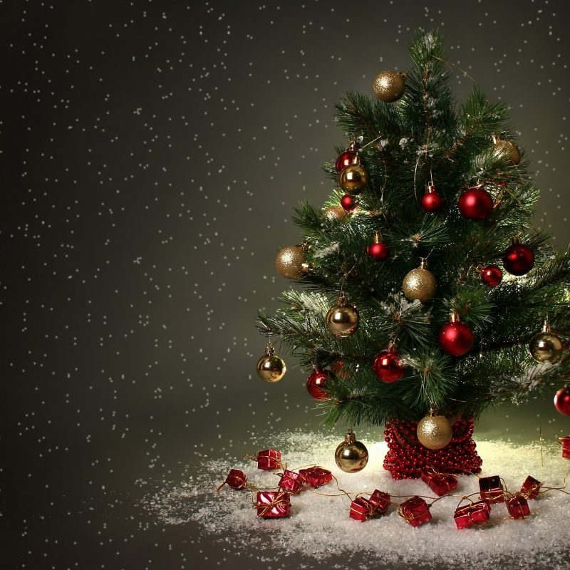 10 Latest Christmas Tree Wall Paper FULL HD 1080p For PC Background 2018 free download small christmas tree e29da4 4k hd desktop wallpaper for 4k ultra hd tv 1 800x800