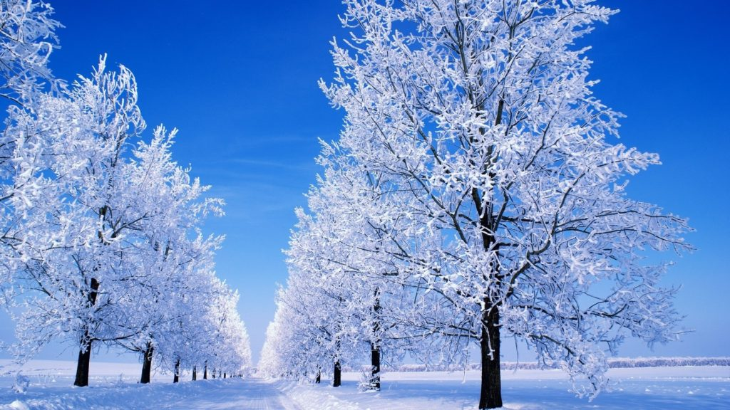 10 Most Popular Winter Scenes Desktop Background FULL HD 1920×1080 For PC Desktop 2020 free download snow scenes desktop background wonderland dreamy snow 1920x1080 1024x576