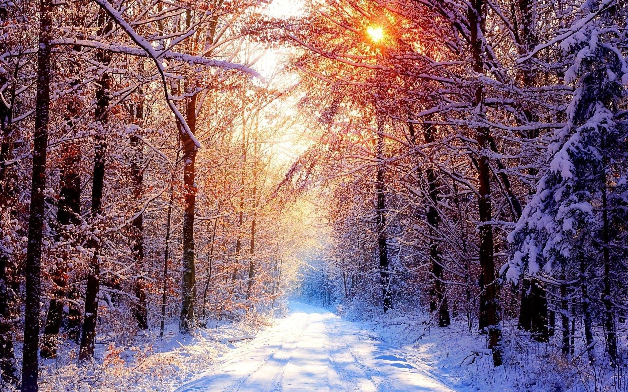 snow scenes wallpaper (56+ images)