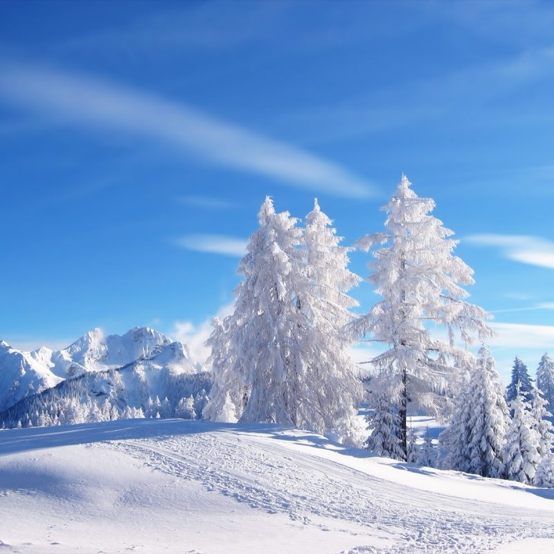 10 Top Snow Pictures For Wallpaper FULL HD 1920×1080 For PC Desktop 2020 free download snow wallpaper wallpapers for free download about 3069 wallpapers 800x800