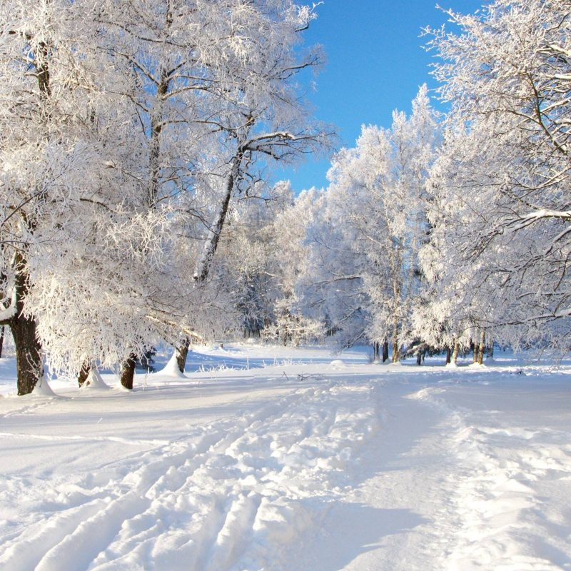 10 New Snow Wallpaper Hd Widescreen FULL HD 1080p For PC Background 2018 free download snow wallpapers 01501 baltana 800x800
