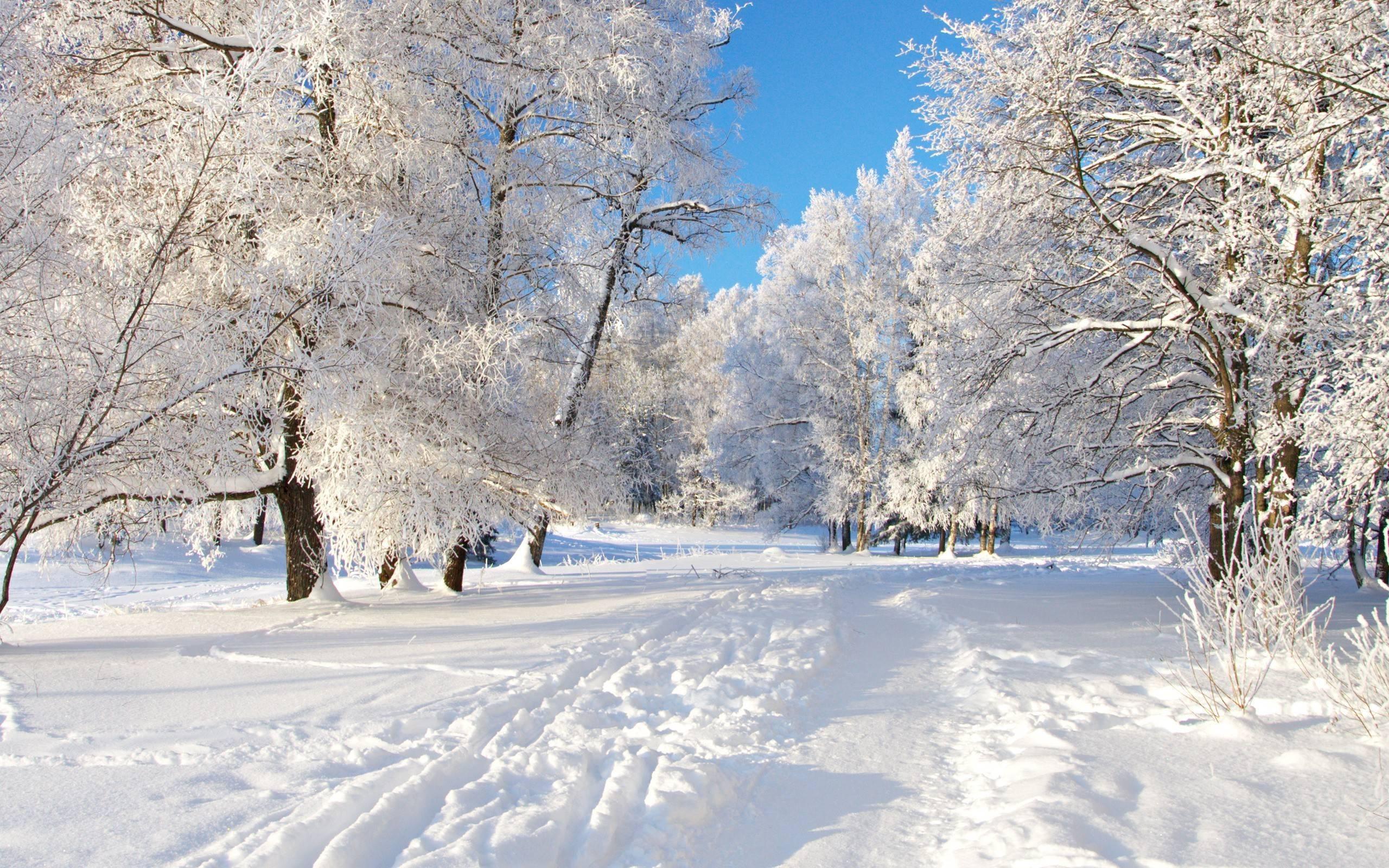 snow wallpapers 01501 - baltana