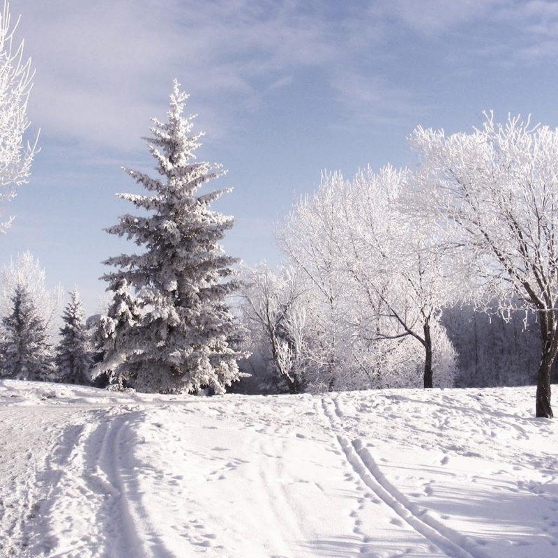 10 Best Snow Desktop Wallpaper Hd FULL HD 1080p For PC Background 2021 free download snowing wallpaper gzsihai 800x800
