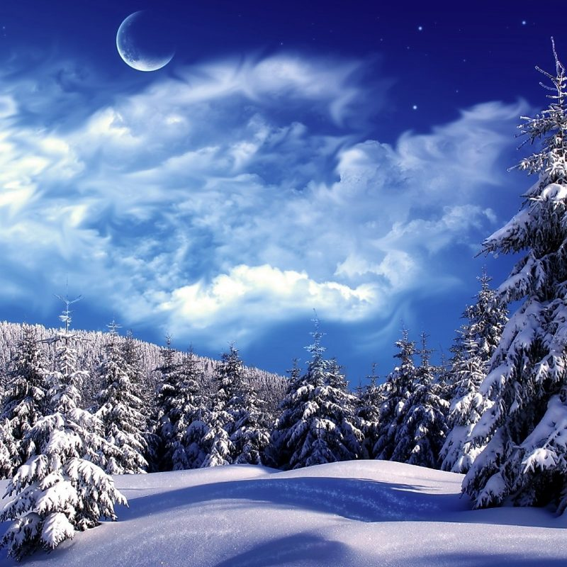 10 Latest Photos Of Snow Scenes FULL HD 1920×1080 For PC Background 2018 free download snowy winter scenes wallpaper snowy wonderland mountain scene 800x800