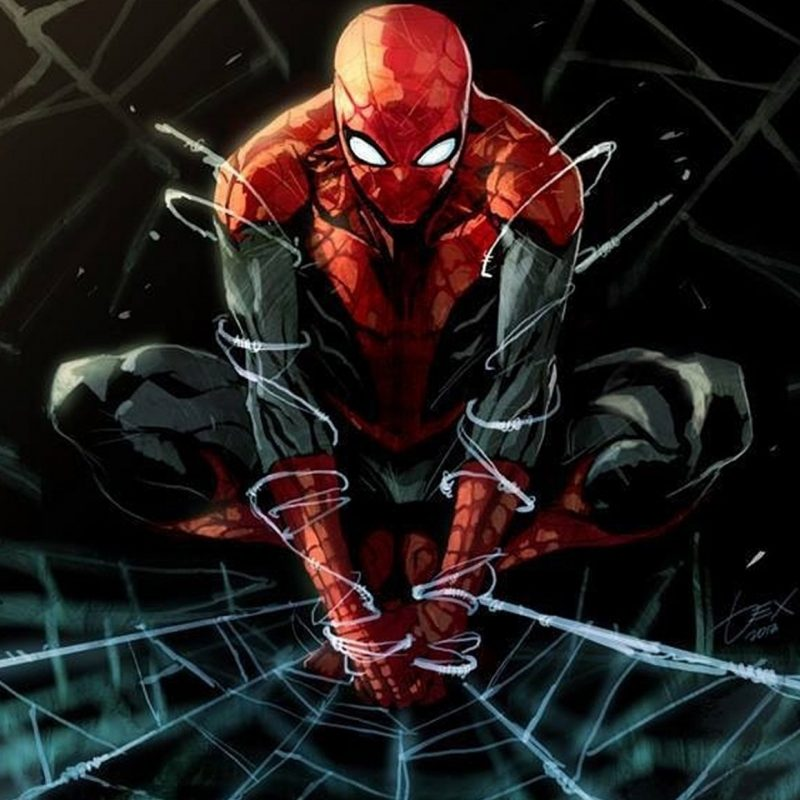 10 New Spider Man Comic Wallpaper FULL HD 1920×1080 For PC Desktop 2018 free download spider man superhero marvel spider man action spiderman wallpaper 800x800