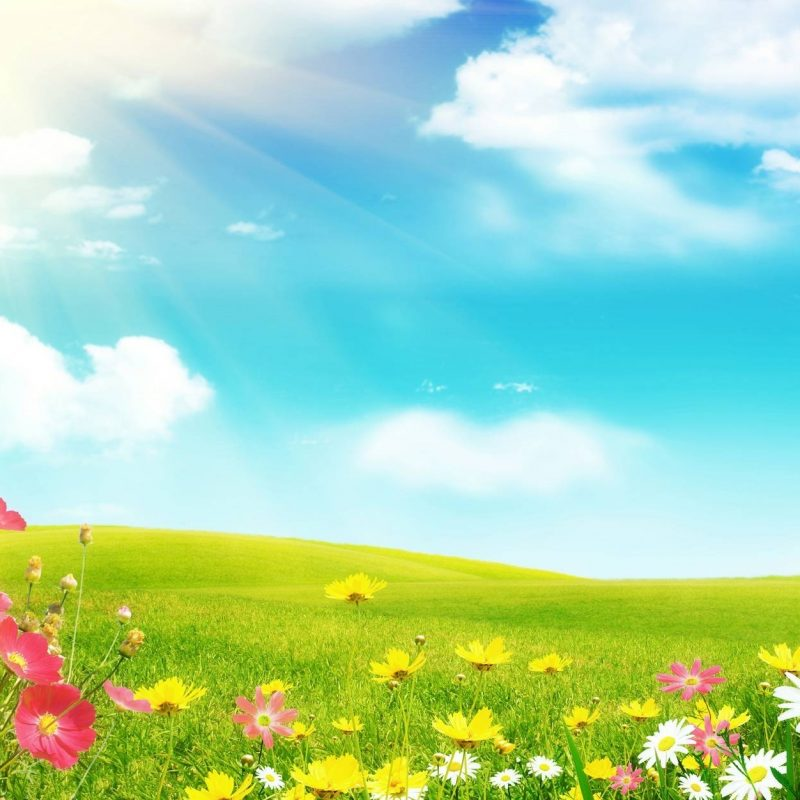 10 Best Spring Background Images Free FULL HD 1920×1080 For PC Desktop 2018 free download spring backgrounds free wallpaper cave 800x800
