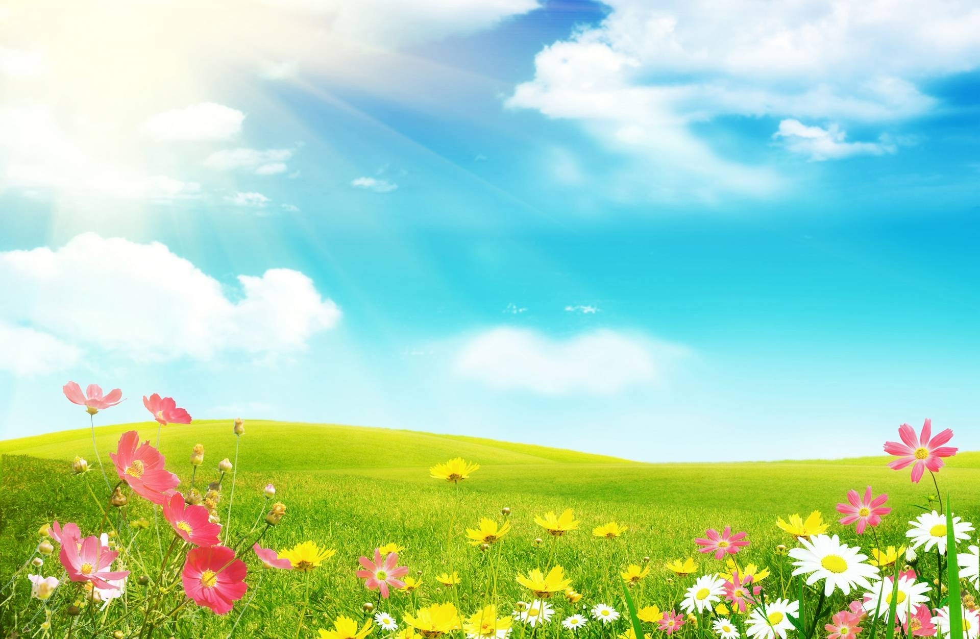 spring backgrounds free - wallpaper cave