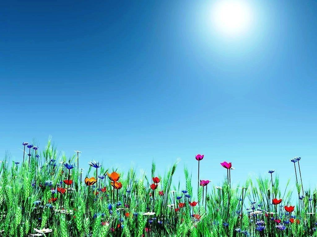 spring backgrounds image free - wallpaper cave