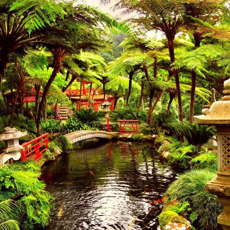 10 Best Hd Japanese Garden Wallpaper FULL HD 1920×1080 For PC Desktop 2018 free download spring japanese garden wallpaper hd outdoors wallpaper 1080p 800x800